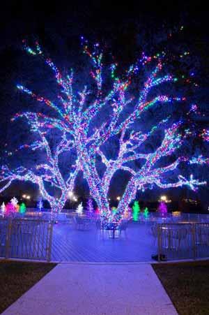 Deck Halls Vitruvian Park Addison Magazine Christmas Lights