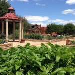 Community Garden, photo courtesy of Addison Arbor Foundation.