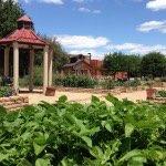 Community Garden, photo courtesy of Addison Arbor Foundation.