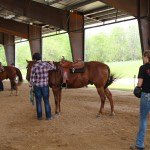Veterans with horses at the Equest Hooves for Heroes Program. Photo courtesy of Honor Courage Commitment.